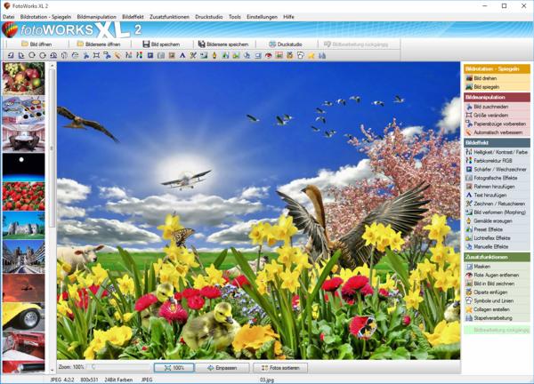 fotobearbeitungsprogramm mit rahmen